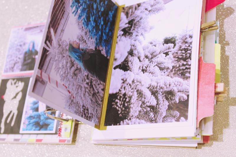 {december 1st} minibook | flap