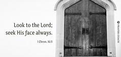 Seek God's Face Bible verse