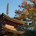 秋の夕陽に - A three-storied pagoda at sunset in autumn -