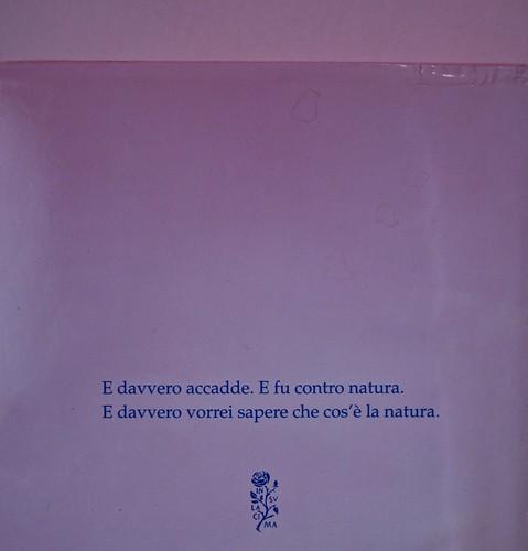 Margaret Mazzantini, Splendore. Mondadori 2013. Art Director: Giacomo Callo; Progetto Grafico: Marcello Dolcini; Graphic Designer: Susanna Tosatti; alla sovracop: ©R. McGinley. Quarta di sovracop. (part.), 3