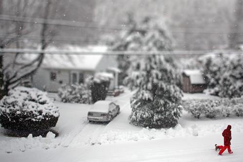 street winter red snow blur canon photography snowflakes photo newjersey small nj scene neighborhood explore jersey americana 5d canon5d tilt blizzard onwhite diorama smalltown neighborhoods snowday tiltshift eastbrunswick middlesexcounty 10000views tiltshiftlens explored realtiltshift inexplore victoryplace eastbrunswicknj smalltownscenes canontse45mmf28 45mmtiltshift canon45mmtiltshift tonyzarakphotography february32014 smalltownseen zarakphotocom