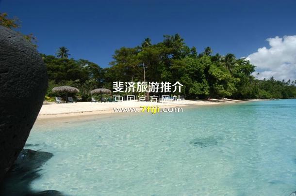 斐济塔韦乌尼水疗酒店(Taveuni Island Resort & Spa)沙滩