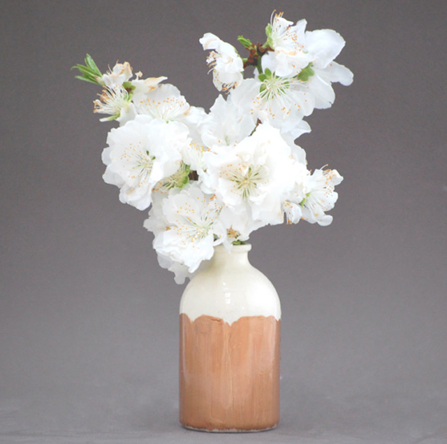 cream and bronze vase