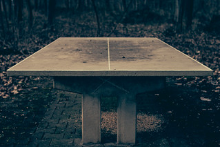 ping-pong in the woods