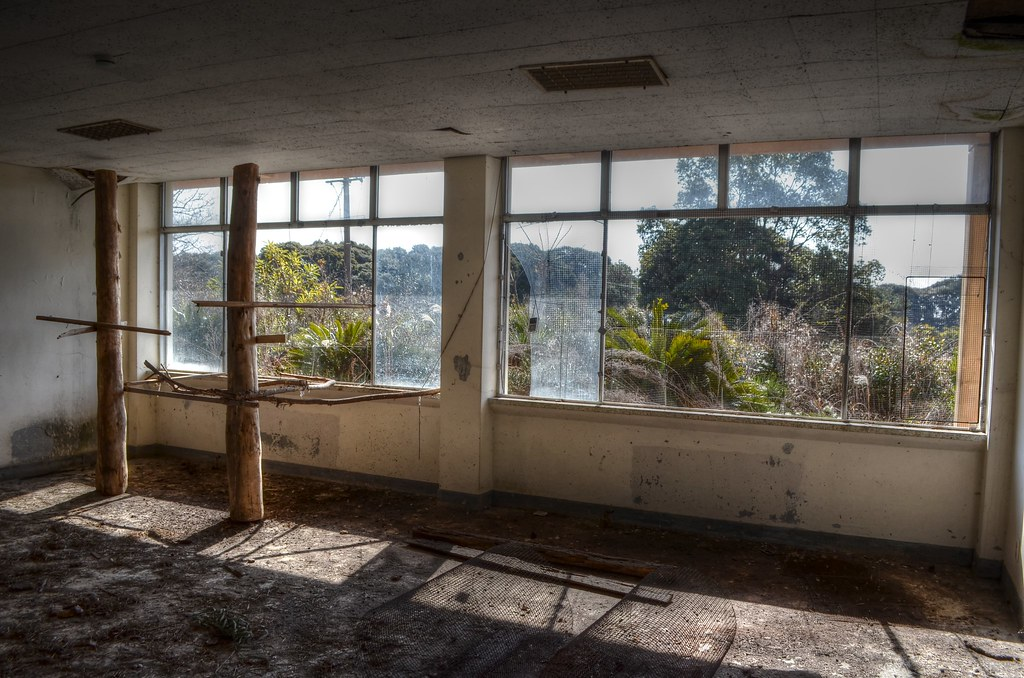 Abandoned School, Jeju, South Korea04