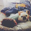 They are #friends. #henrihopper #frenchie #frenchbulldog #buhi #bedtime