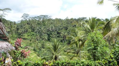 Bali-2-061