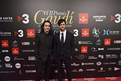 Catifa vermella VII Premis Gaudí (88)