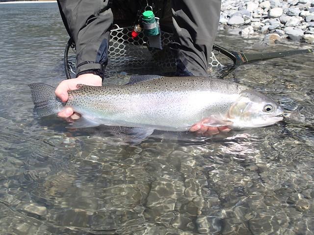 Heli Fishing New Zealand