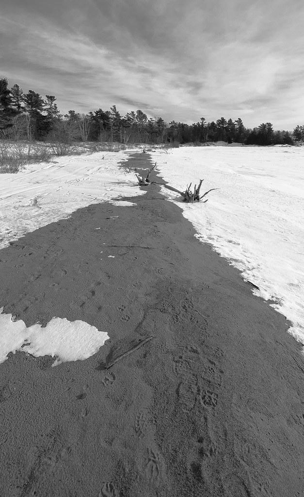 Snowy Sand dune