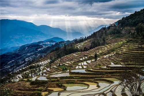 china travel light sunset color colour field landscape nikon exterior view rice cloudy terrace chinese land 中国 yunnan interest hdr chine yuanyang 云南 元阳 d600 coloris qiconglin