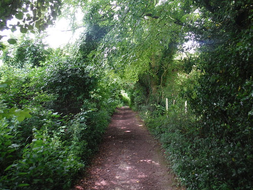 Lane from West Tytherley to Stoney Batter