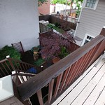 Back deck to backyard