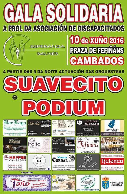 Cambados 2016 - Gala Solidaria - cartel