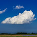 100 Days of Summer #13 - The Cloud