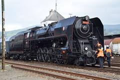 Czech steam specials