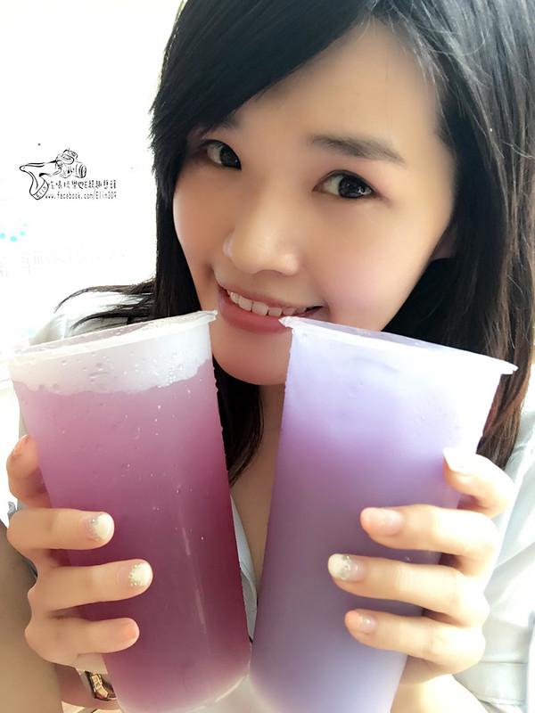 台灣雷夢 (27)
