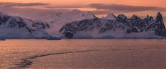 Pink Antarctic sunset