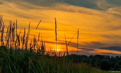 travel sunset hungary sony magyar beautyful zemplén ngn a6300 55210mm