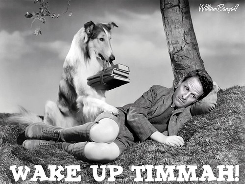 MAKE UP TIMMAH! by WilliamBanzai7/Colonel Flick
