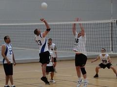 volleyball player(1.0), ball over a net games(1.0), volleyball(1.0), sports(1.0), wallyball(1.0), team sport(1.0), ball game(1.0),