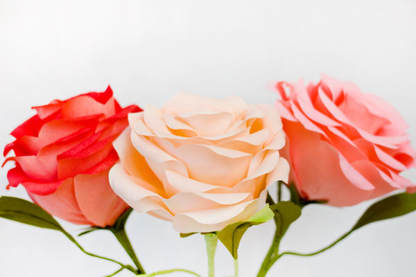 How-To-Make-Giant-Crepe-Paper-Roses