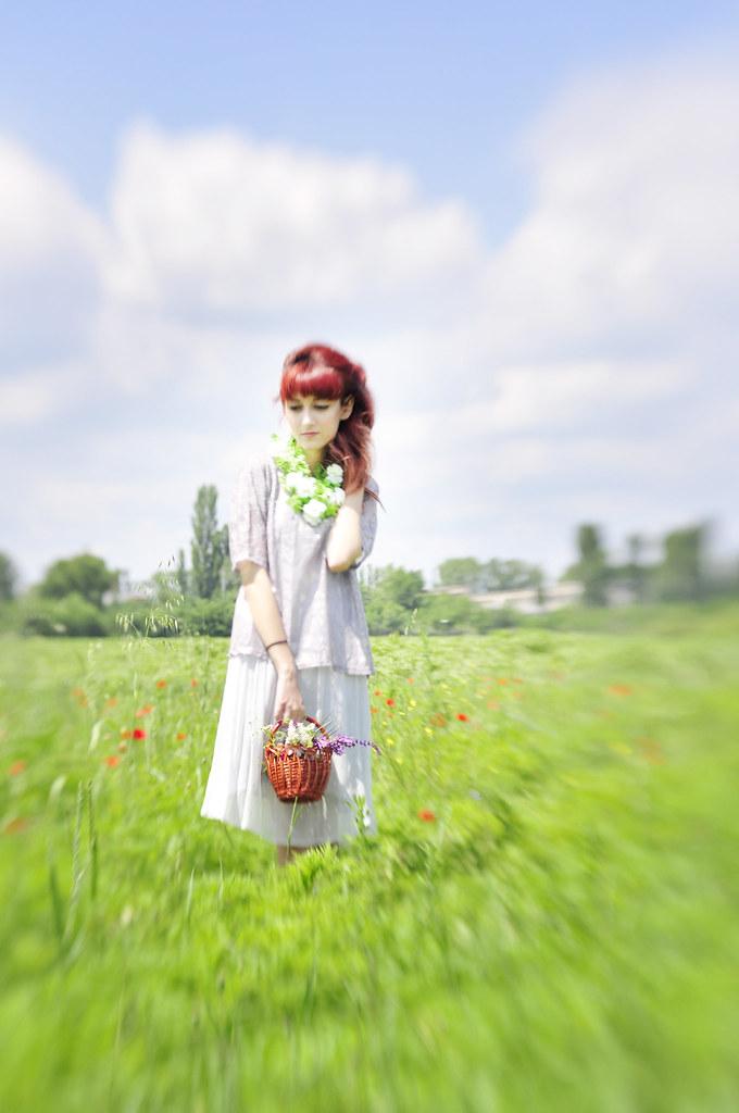 A_Midsummer's_Daydream (2)