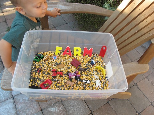 Farm Sensory Tub (Photo from Carrots Are Orange)
