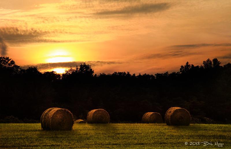 IMAGE: http://farm8.staticflickr.com/7313/9113888895_4858855230_c.jpg