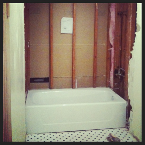 Hall Bath Renovation