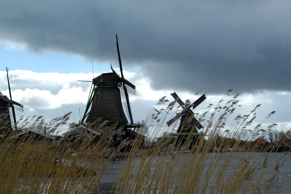 10. Otra vista de los molinos de Zaanse Schans. Autor, Johan Wieland