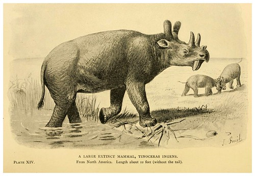 010- Extinct monsters…1896- H. N. Hutchinson