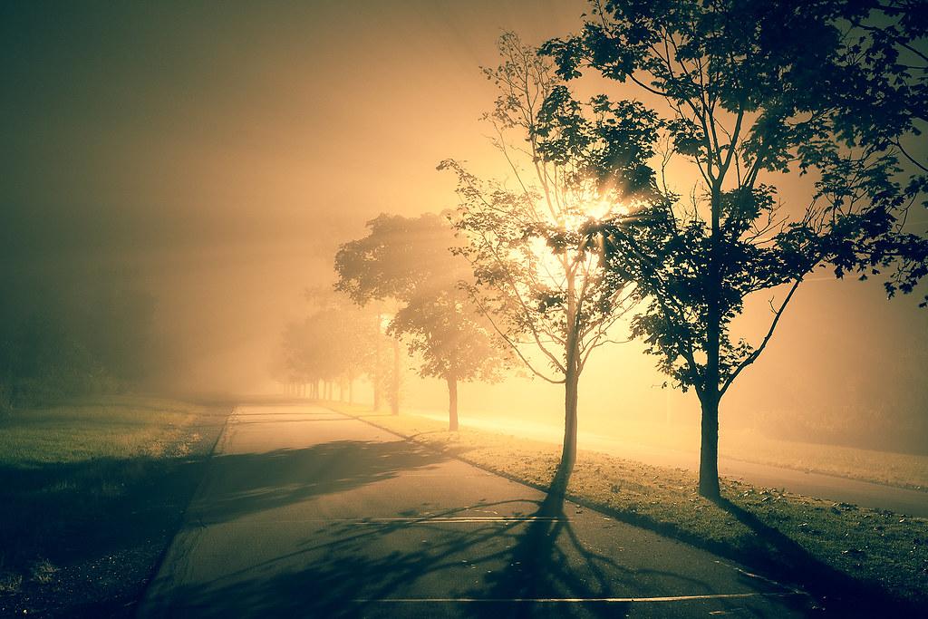 IMAGE: http://farm8.staticflickr.com/7313/9725898492_57d78546a6_b.jpg