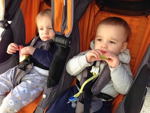 Differing Reactions to their Farmer's Market Watermelon