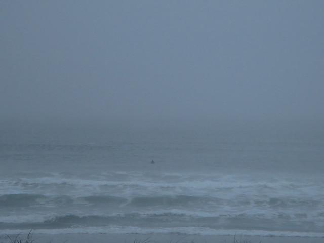 Waves and overcast at Ocean Beach, San Francisco (2013)