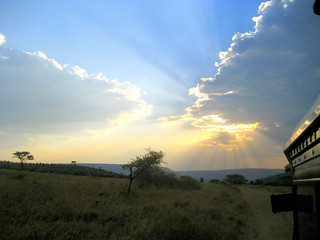 Sonnenuntergang (Serengeti)