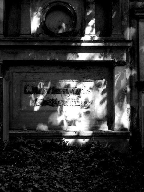 Jüdischer Friedhof  Berlin_2013_55