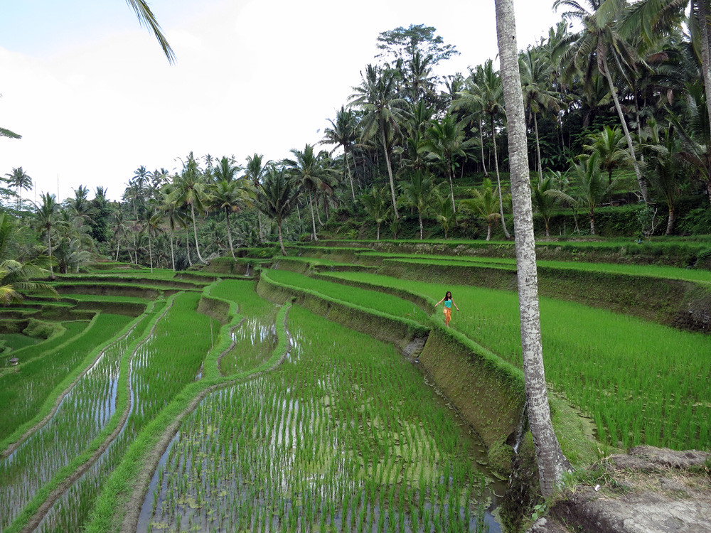 Bali040