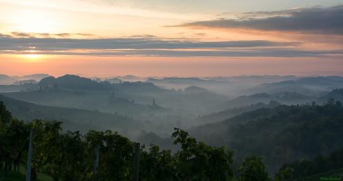 fog sunrise österreich nikon nebel vineyards nikkor sonnenaufgang vr afs steiermark weinberge südsteiermark 1685 d7100 sulztal southstyria