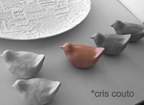 ....passarinhos by cris couto 73