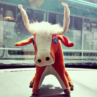 I couldn't resist this little stuffed longhorn!