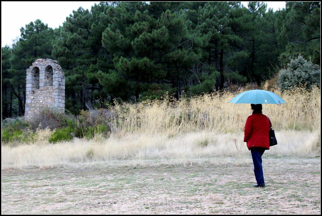 los colores de este otoño pintan la sierra de Guadarrama