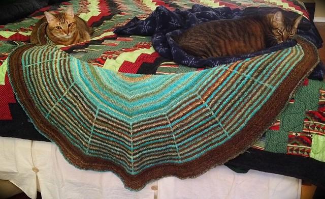 Daybreak shawl