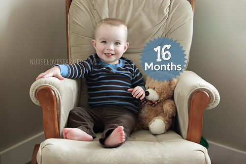 Ethan is 16 Months Old!