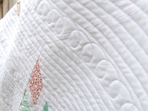 Close up of Lone star quilting