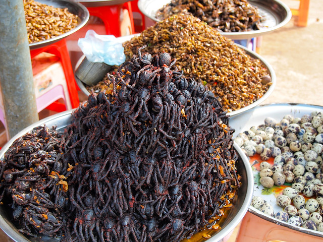 Fried spiders in Cambodia