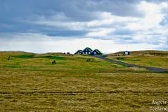 Landsveit/Iceland.