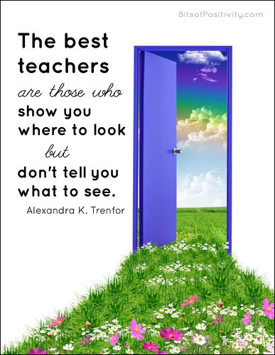 """The best teachers are those who show you where to look but don't tell you what to see."" Alexandra K. Trenfor"