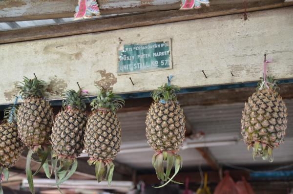 Hanging Pineapples