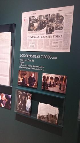 """Cartel de """"Los girasoles ciegos"""". Cinegalicia25. Cidade da Cultura"""